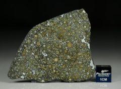 ALLENDE (11.50 gram)