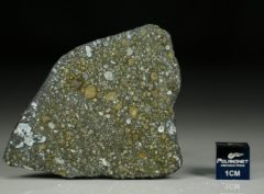 ALLENDE (10.52 gram)