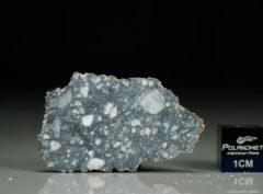 NWA 11421 (6.13 gram)
