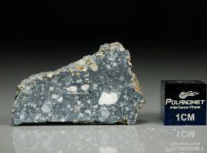 NWA 11421 (4.56 gram)