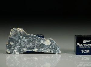 NWA 11421 (1.96 gram)