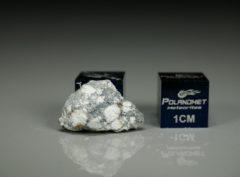 NWA 11421 (1.33 gram)