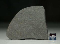 NWA 12816 (18.14 gram)