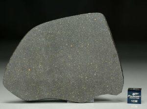 NWA 12816  (30.62 gram)