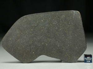 NWA 12816 (41.92 gram)