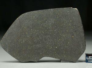 NWA 12816 (38.34 gram)