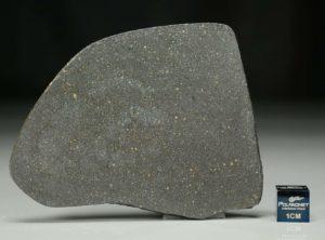 NWA 12816 (25.80 gram)