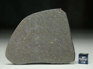 NWA 12816 (23.40 gram)