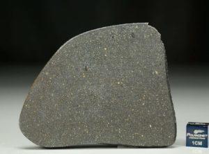 NWA 12816 (21.50 gram)