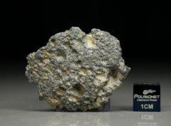 NWA 11421 (5.23 gram)