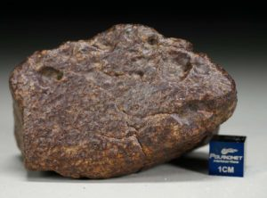 NWA XXX (191 gram)