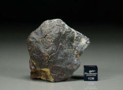 Dhofar 1662 [H6] (74.5 gram)
