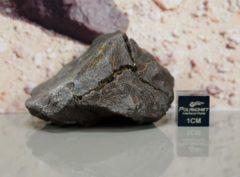 Dhofar 1662 [H6] (57.7 gram)