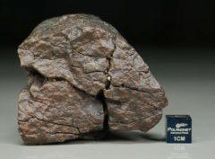 B60 (238 gram)