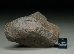 Dhofar 1665 [L3] (83 gram)