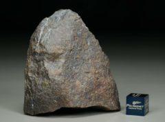 Dhofar 1665 [L3] (113 gram)