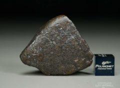 Jiddat al Harasis 656 [L6] (29.2 gram)