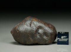 Jiddat al Harasis 656 [L6] (31.9 gram)