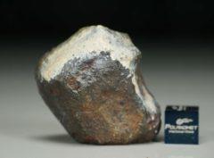 Jiddat al Harasis 656 [L6] (38.6 gram)
