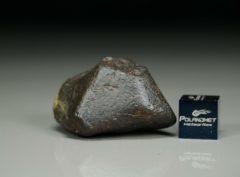 Jiddat al Harasis 656 [L6] (19.6 gram)