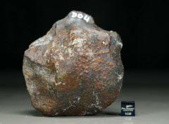 D04 (375 gram)