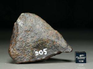 D05 (197 gram)