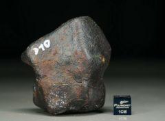 D10 (127 gram)