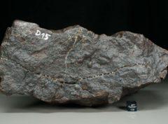 Dhofar 2059 [H5] (4404 gram)