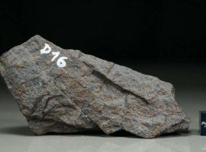 D16 (169 gram)