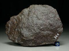 Jiddat al Harasis 1075 [L5] (1194 gram)