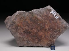 JaH091 D32H (2087 gram)