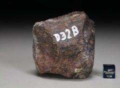 D32B (226 gram)