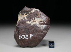 D32F (456 gram)