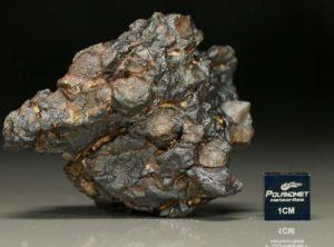 NWA 7853 (114.8 gram)