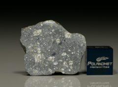 NWA 8647 (3.84 gram)