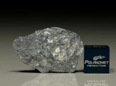 NWA 8647 (3.89 gram)