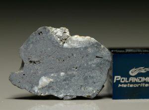NWA 8647 (2.44 gram)