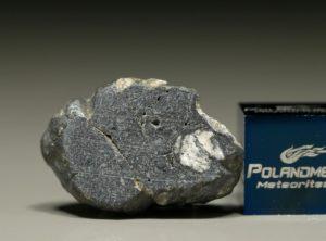 NWA 8647 (3.31 gram)