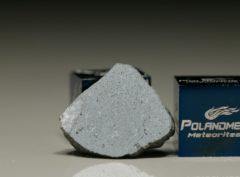 NWA 8647 (1.78 gram)