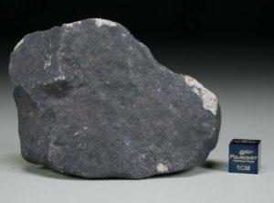 GHADAMIS (227 gram)