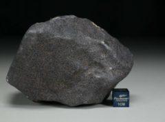 GHADAMIS (447 gram)