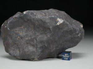 GHADAMIS (683 gram)
