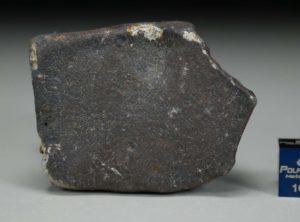 GHADAMIS (141 gram)