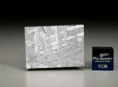 NWA 6903 (19.14 gram)