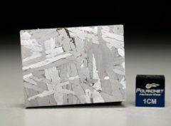 NWA 6903 (33.25 gram)
