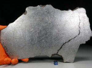 NWA 6903 (1710 gram)