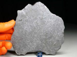 YAROVOYE (188 gram)