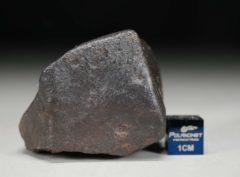 JaH091 (97.0 gram)