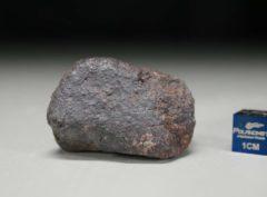 JaH091 (47.5 gram)