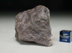 JaH091 (66.3 gram)